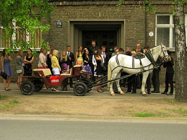 Horse cariage in Riga streets